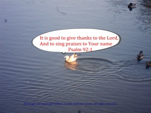 GIVE THANK TO THE LORD WITH PRAISE