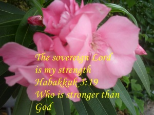 LORDS STRENGTH
