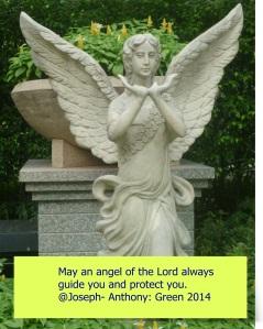PROCTECTIVE ANGEL