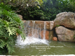 exotic-foilage-by-waterfall