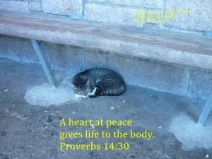 heart-at-peace