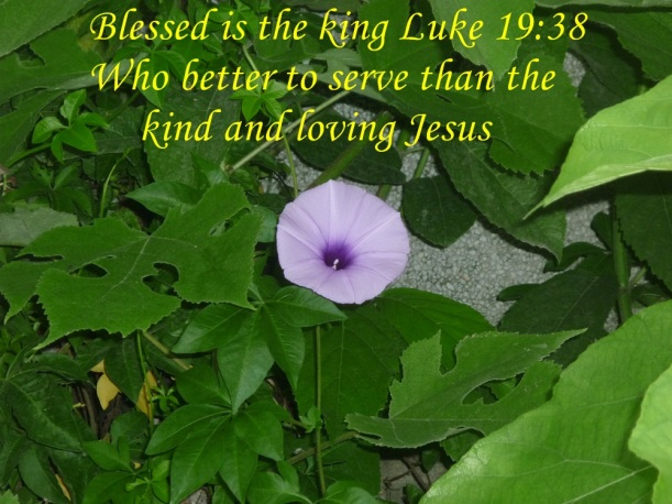 SERVING CHRIST
