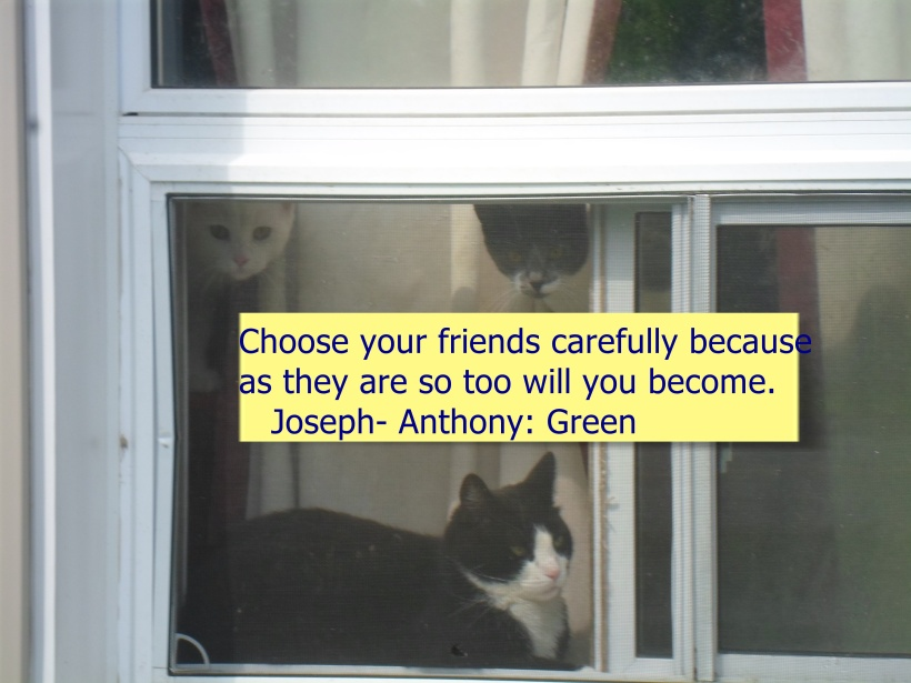 CHOOSE FRIENDS