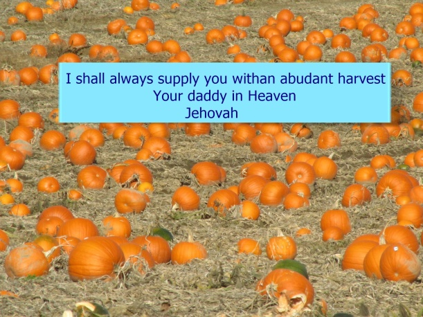 JEHOVAH ALWAYS SUPPLIES