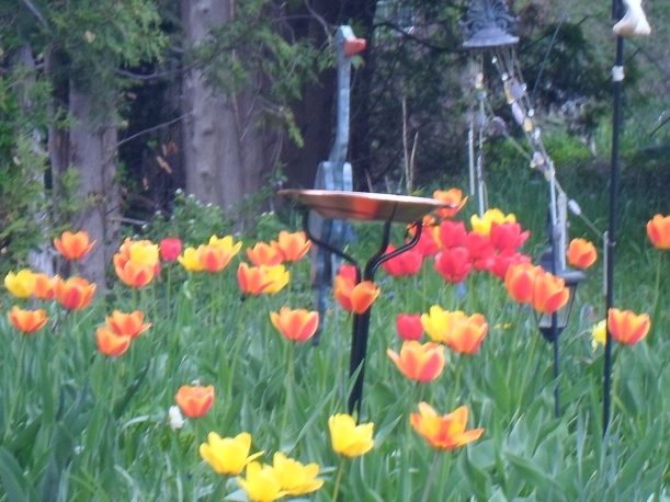 BIRD BATH IN FLOWERS