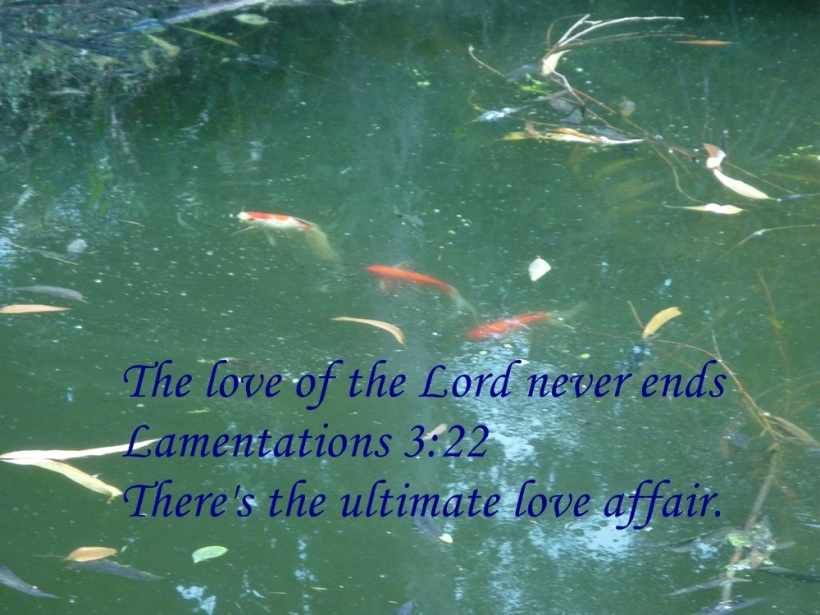 JEHOVAH lOVE AFFAIR