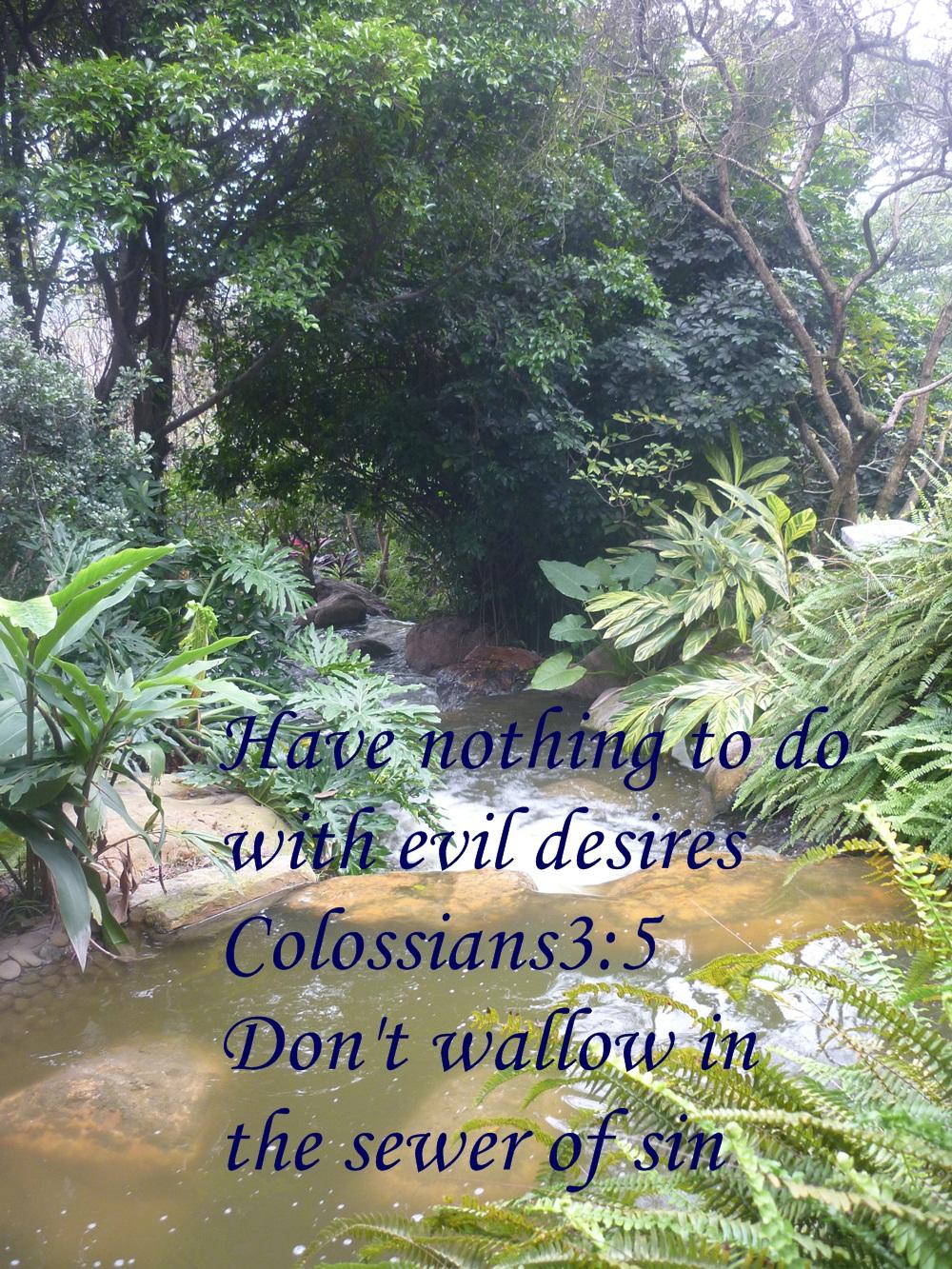 evil desires