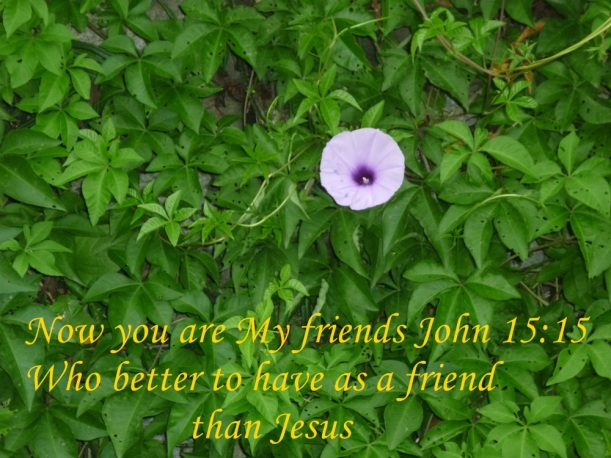 JESUS MY BEST FRIEND