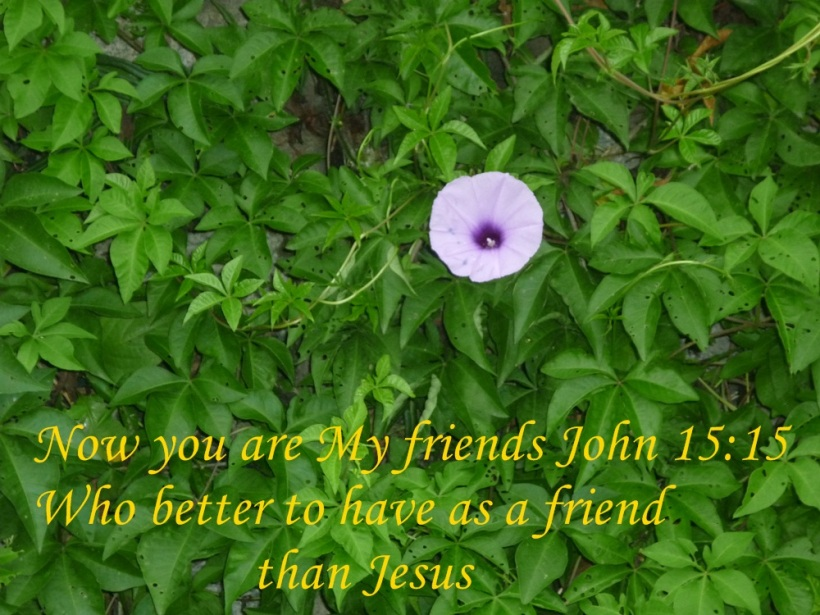 JESUS MY BEST FRIEND